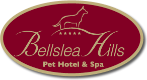 Bellslea Hills Pet Hotel and Spa